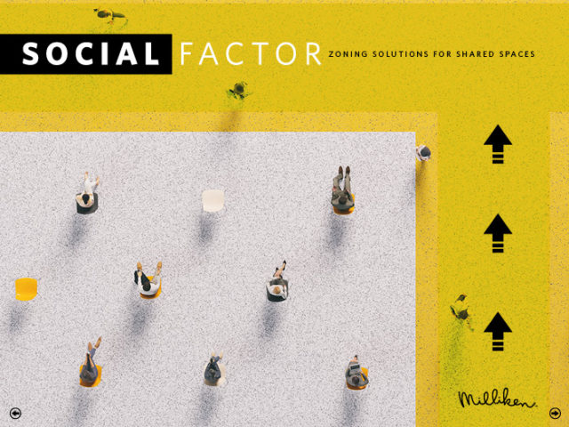 Social Factor Interactive Brochure